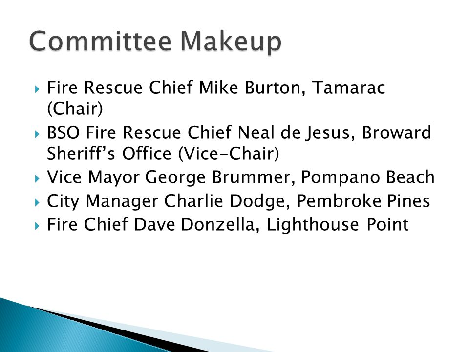 Committee Makeup Fire Rescue Chief Mike Burton, Tamarac (Chair)