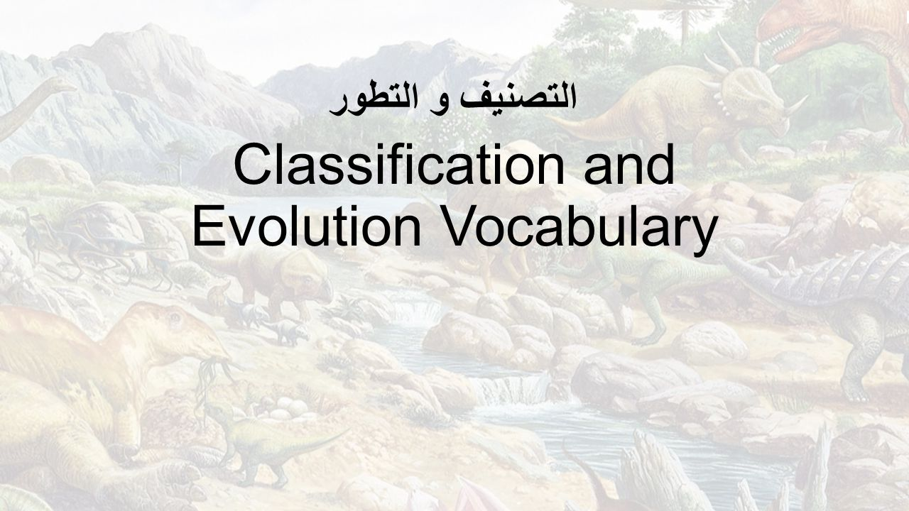 Classification and Evolution Vocabulary