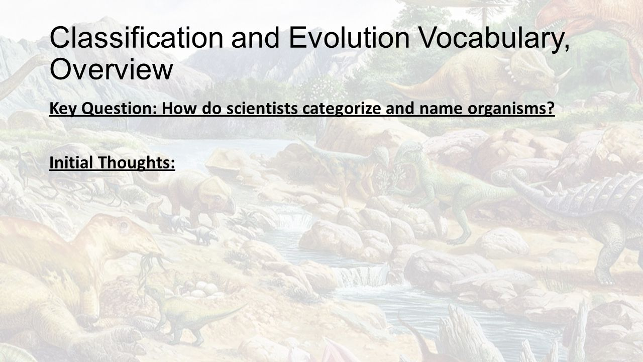 Classification and Evolution Vocabulary, Overview
