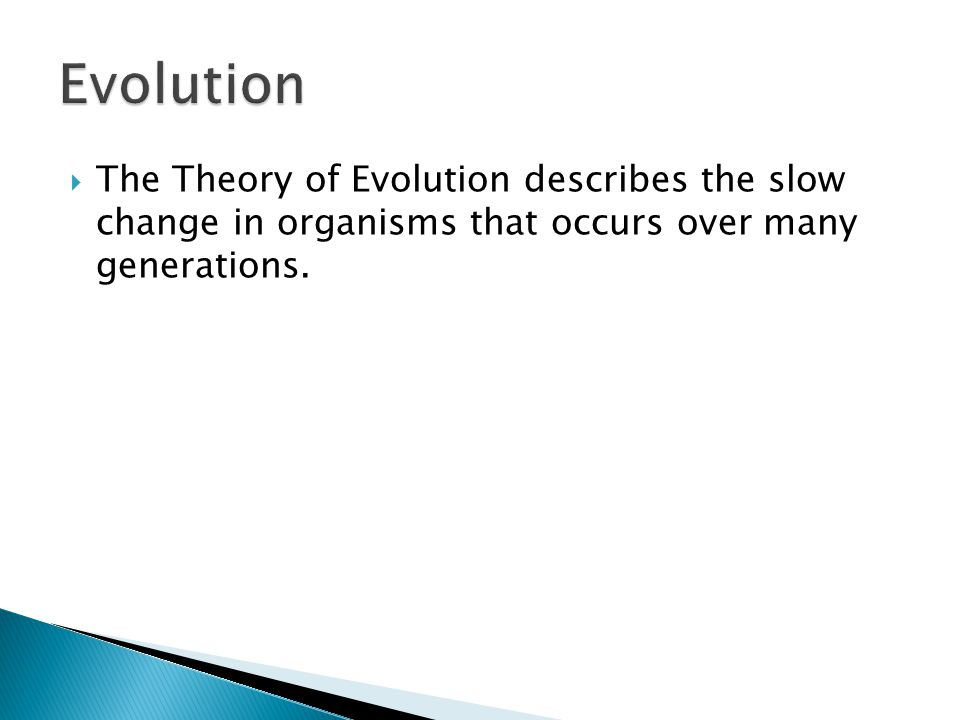 Evolution The Theory of Evolution describes the slow change in organisms that occurs over many generations.