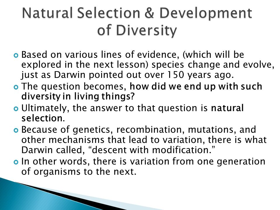 Natural Selection & Development of Diversity