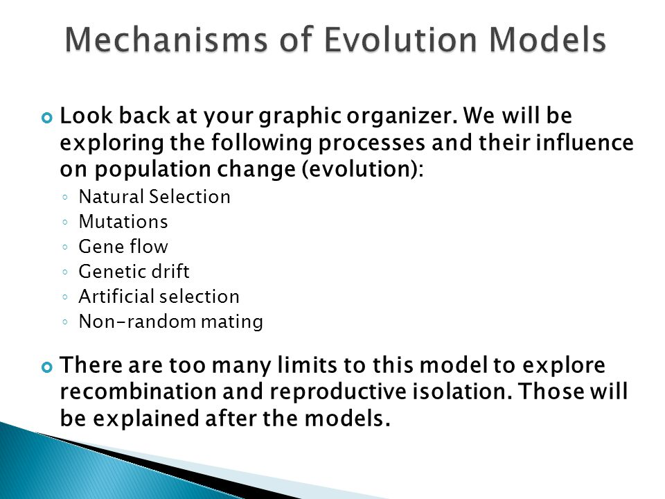 Mechanisms of Evolution Models