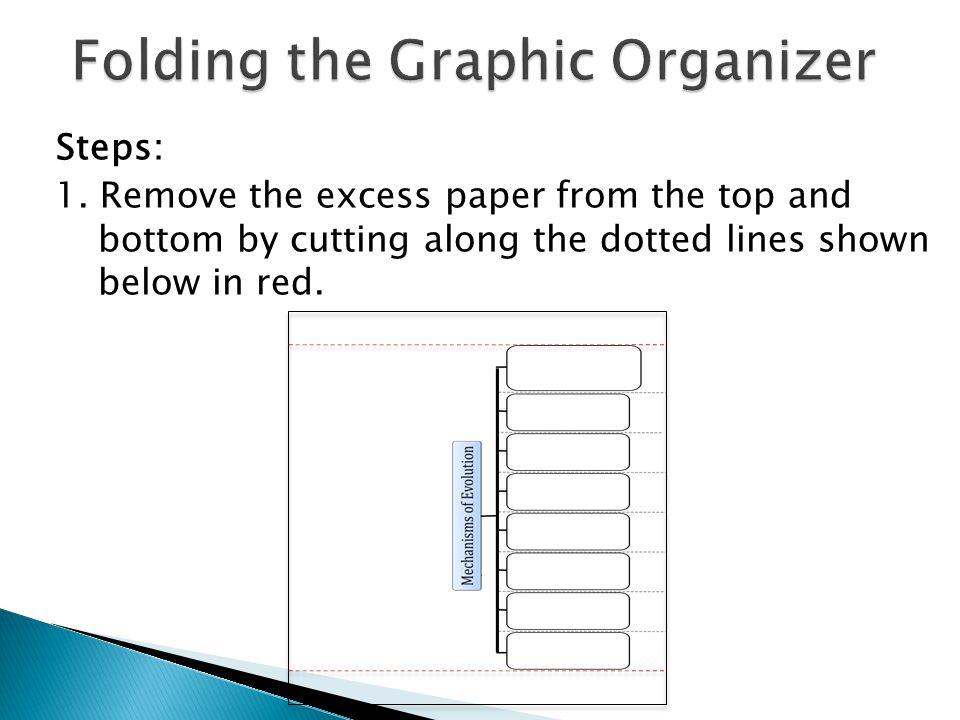 Folding the Graphic Organizer