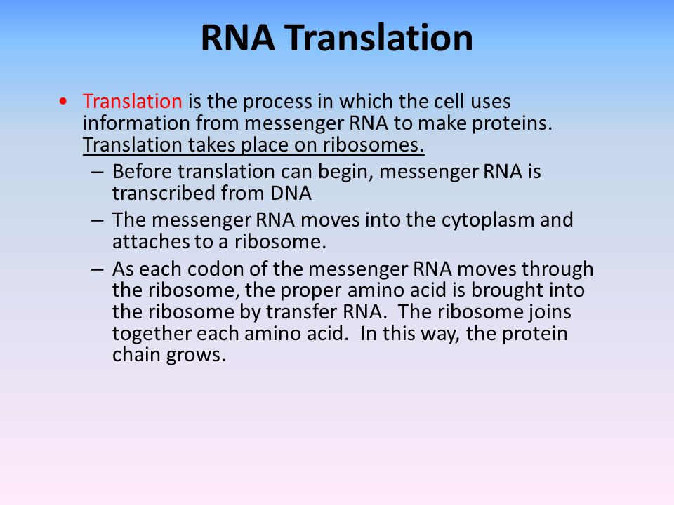 RNA Translation