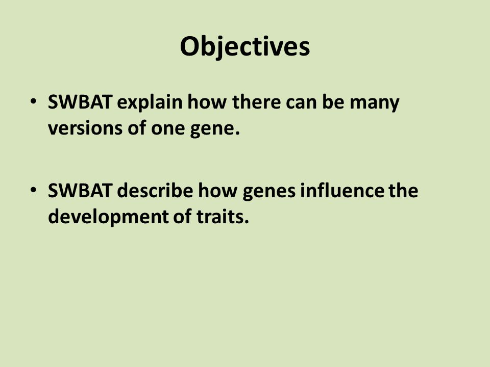 Objectives SWBAT explain how there can be many versions of one gene.