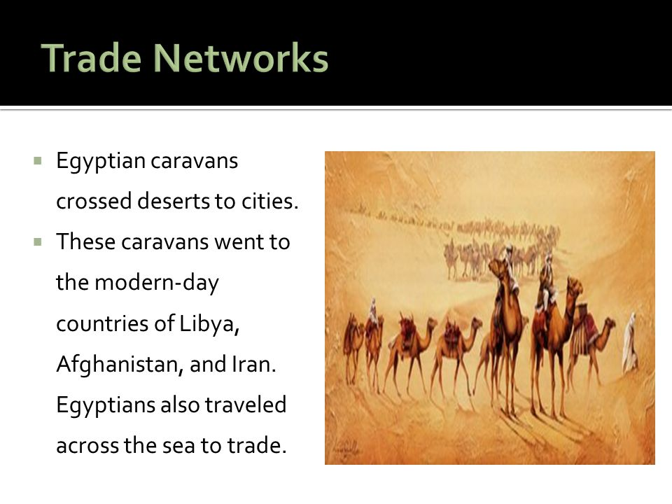 Trade Networks Egyptian caravans crossed deserts to cities.