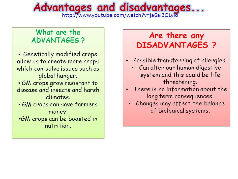 advantage disadvantage gm food essay