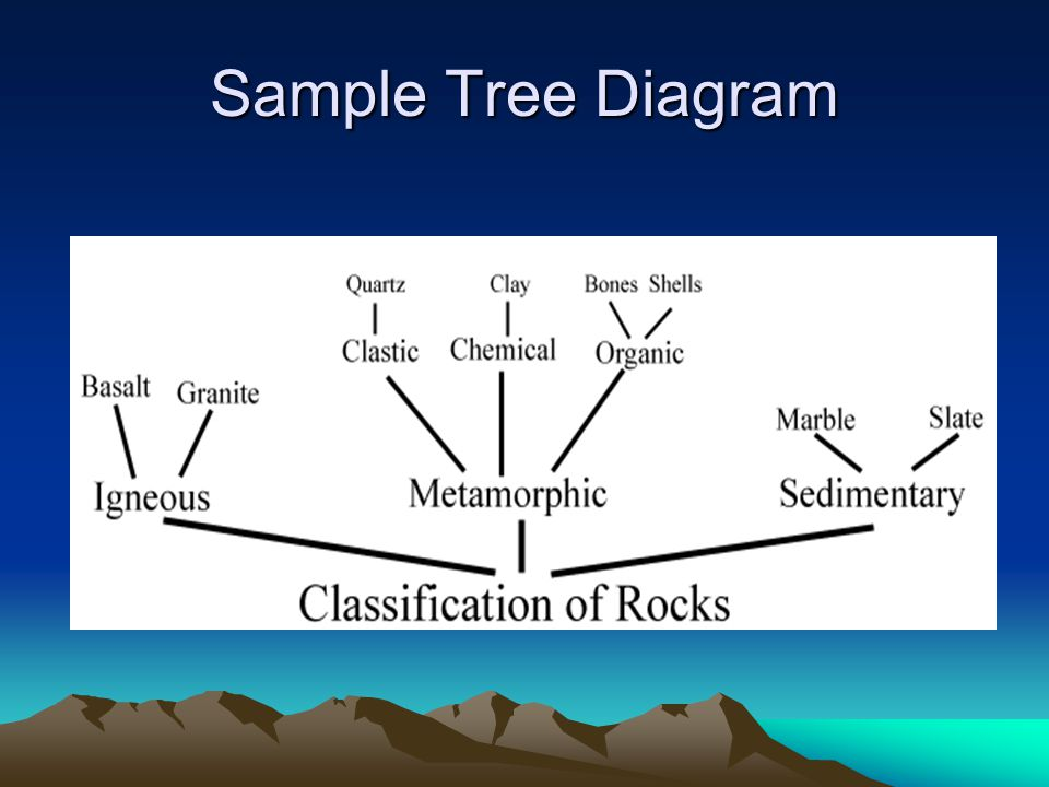 Sample Tree Diagram
