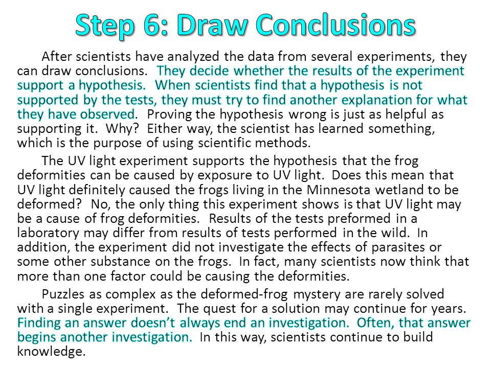 Step 6: Draw Conclusions