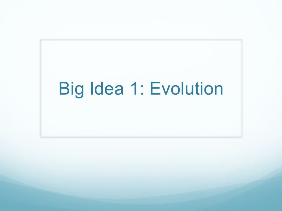 Big Idea 1: Evolution