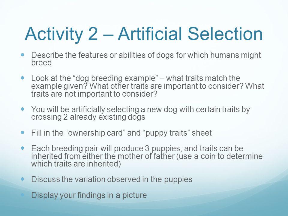 Activity 2 – Artificial Selection