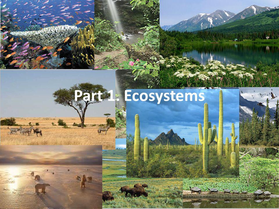 Part 1. Ecosystems