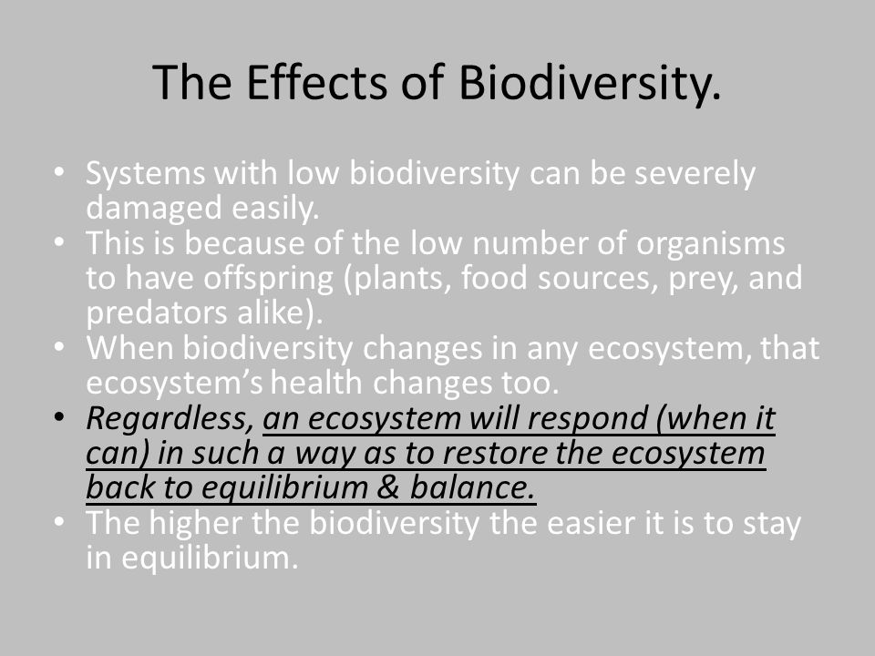 The Effects of Biodiversity.