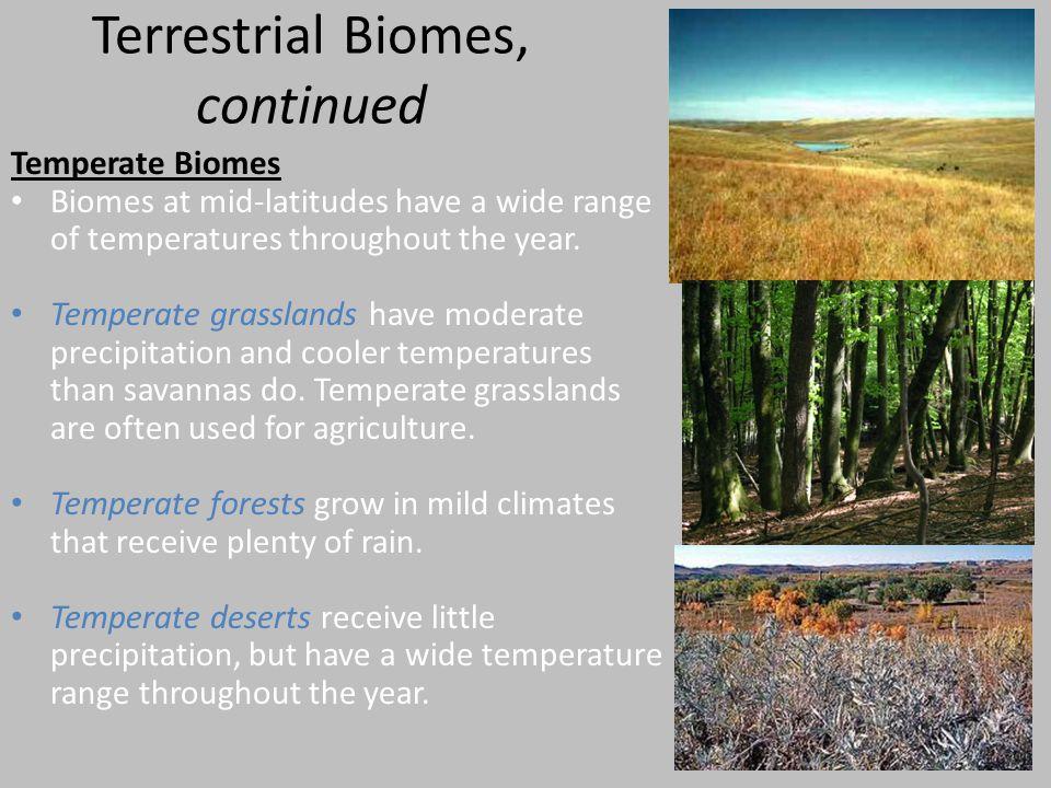 Terrestrial Biomes, continued