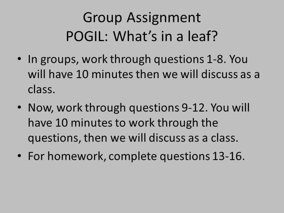 Group Assignment POGIL: What's in a leaf