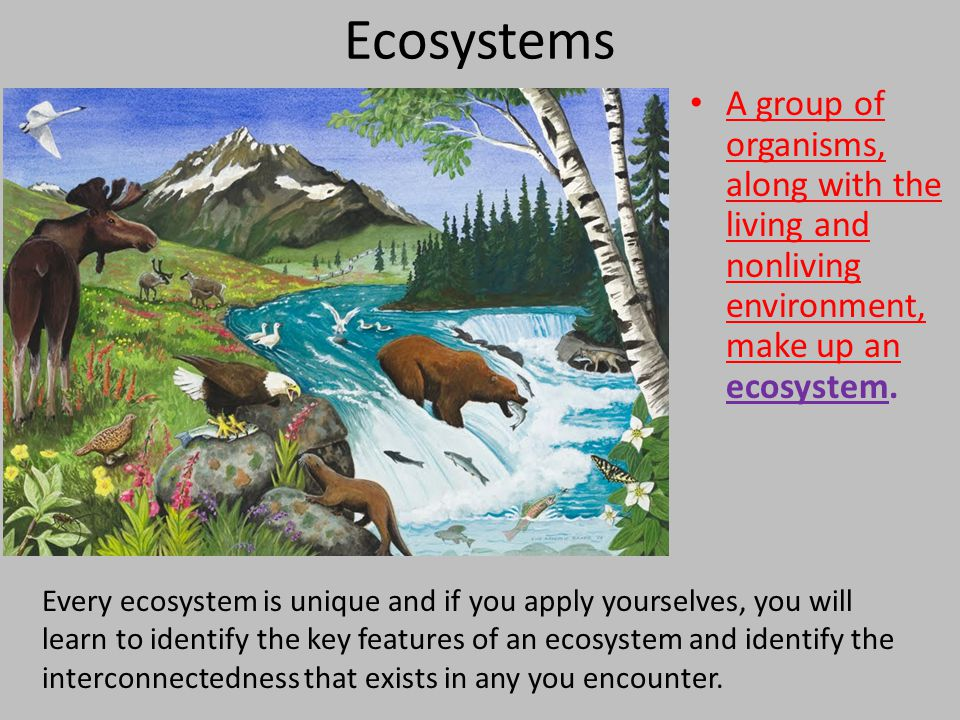 Ecosystems A group of organisms, along with the living and nonliving environment, make up an ecosystem.
