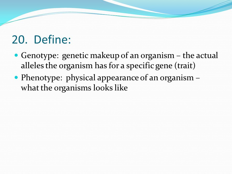 20. Define: Genotype: genetic makeup of an organism – the actual alleles the organism has for a specific gene (trait)