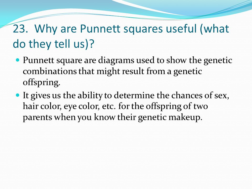 23. Why are Punnett squares useful (what do they tell us)
