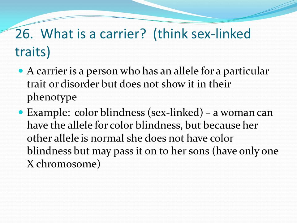 26. What is a carrier (think sex-linked traits)