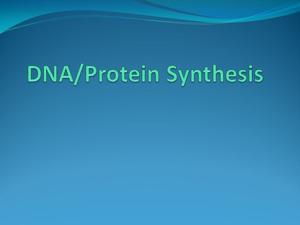 DNA/Protein Synthesis