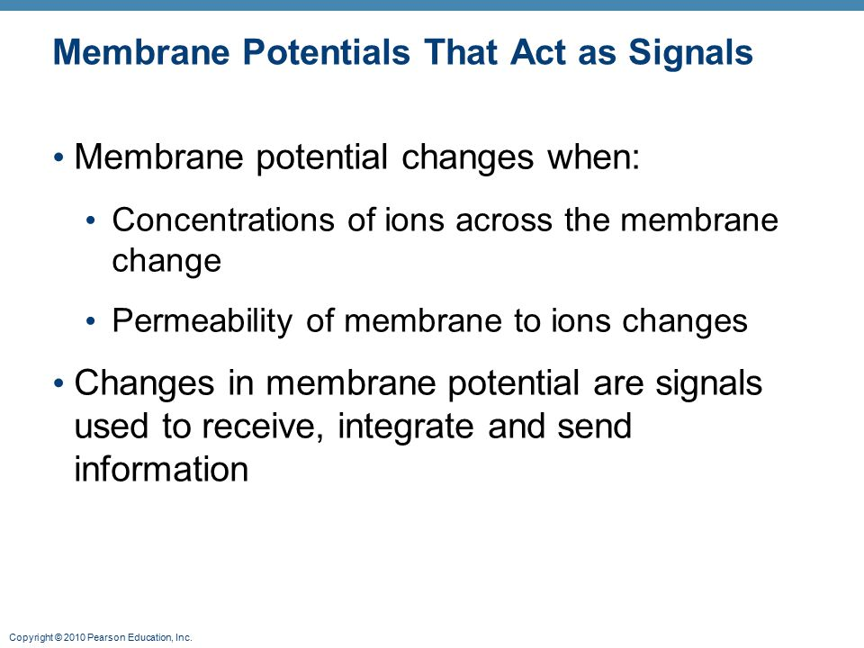 Membrane Potentials That Act as Signals