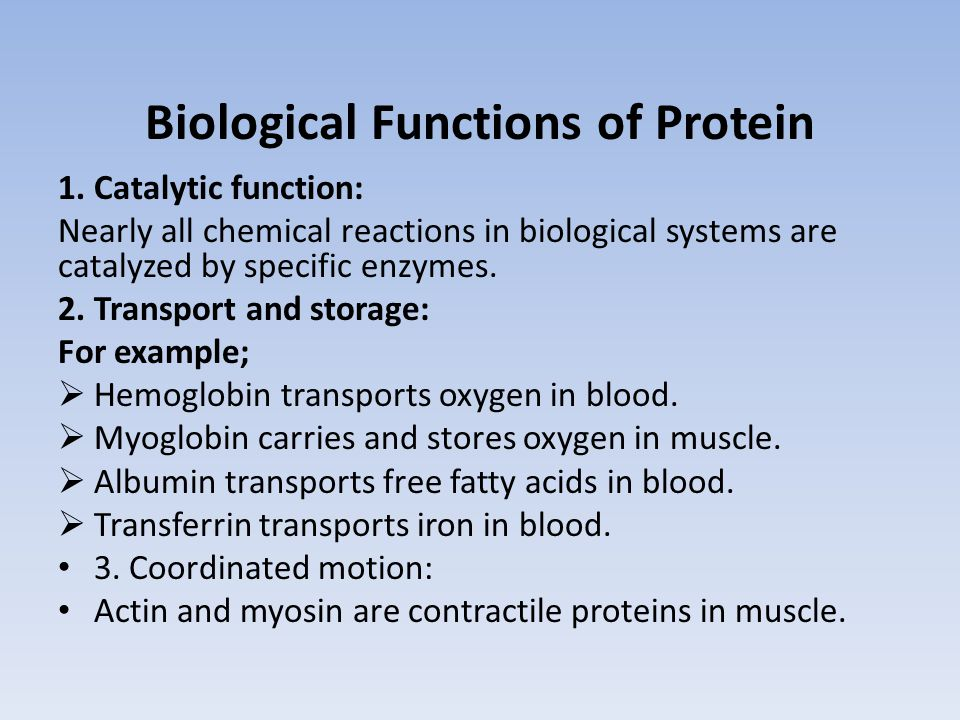 Biological Functions of Protein