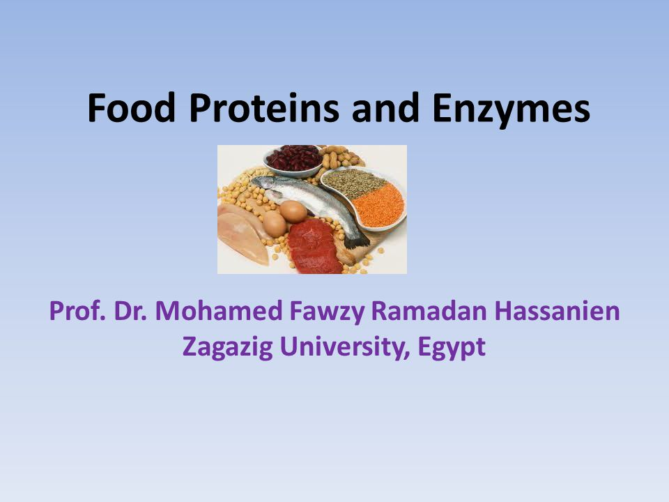 Food Proteins and Enzymes