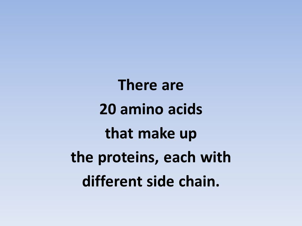 There are 20 amino acids that make up the proteins, each with different side chain.
