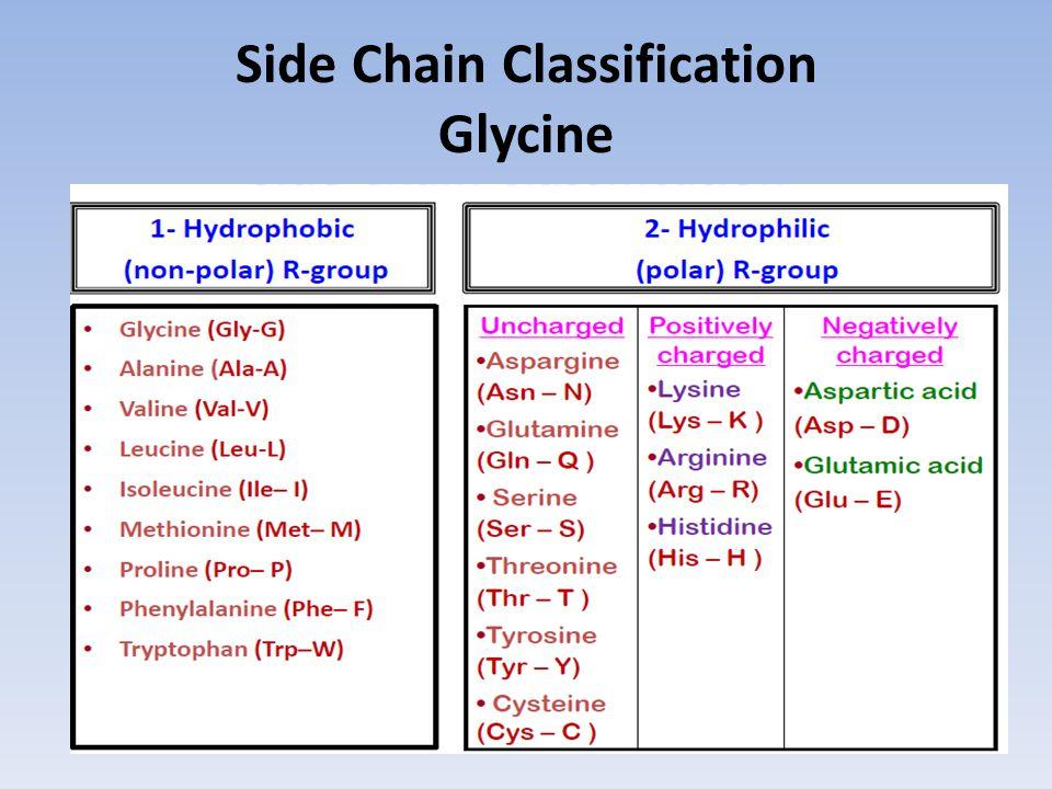 Side Chain Classification Glycine