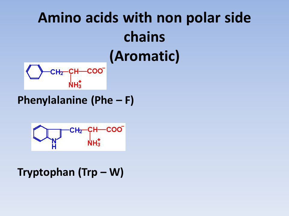 Amino acids with non polar side chains (Aromatic)