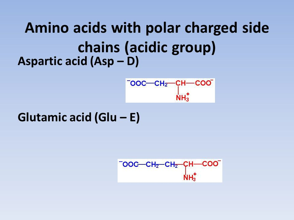Amino acids with polar charged side chains (acidic group)