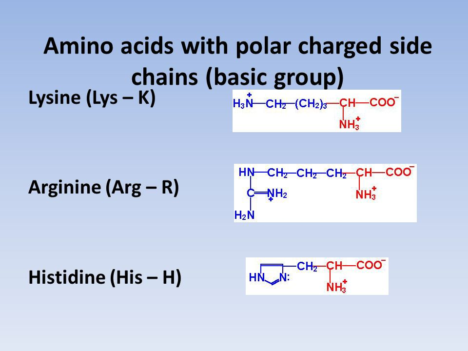 Amino acids with polar charged side chains (basic group)