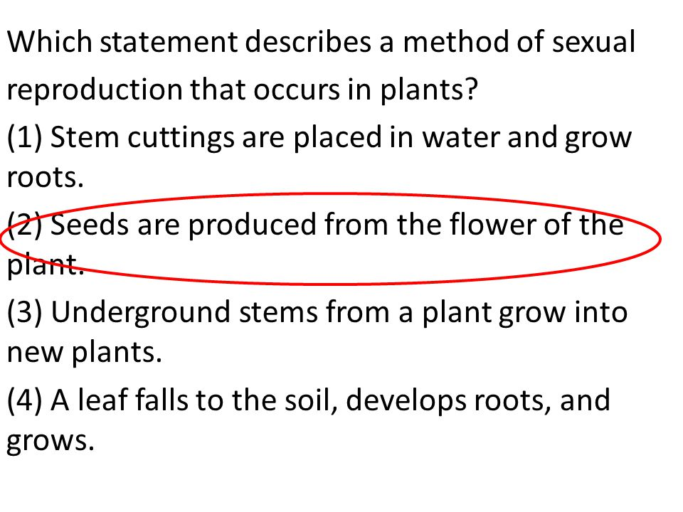 Which statement describes a method of sexual reproduction that occurs in plants.