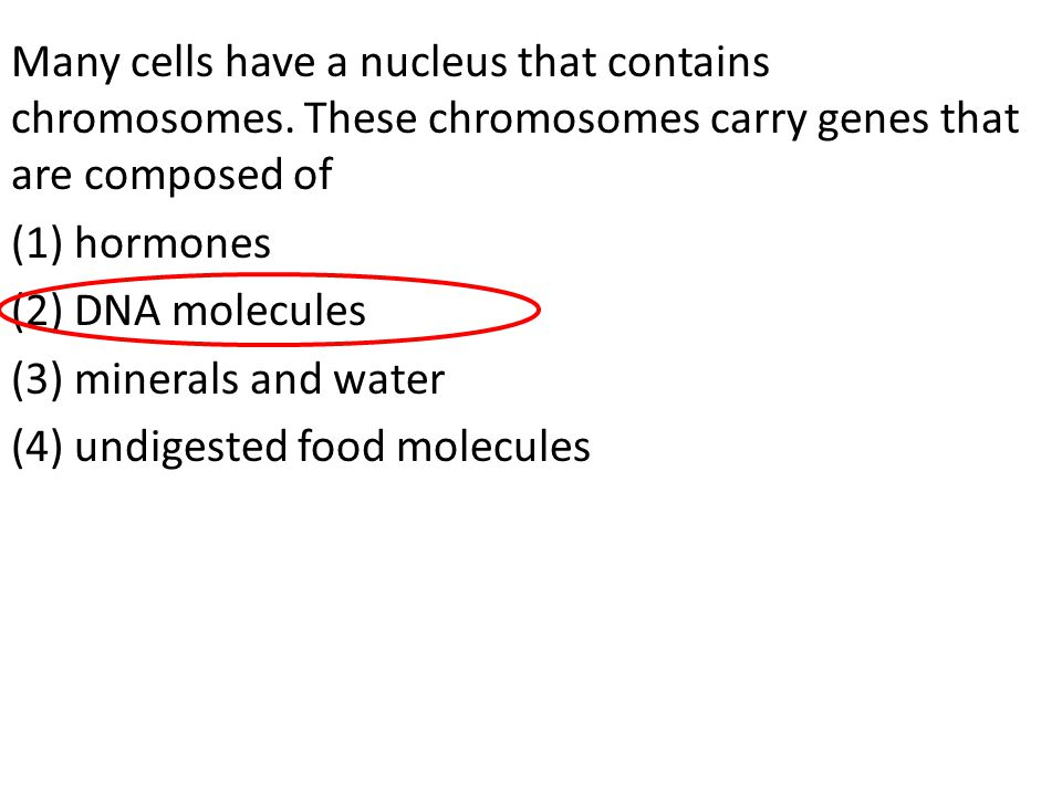 Many cells have a nucleus that contains chromosomes