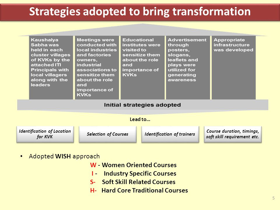 Strategies adopted to bring transformation