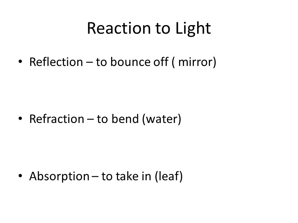 Reaction to Light Reflection – to bounce off ( mirror)