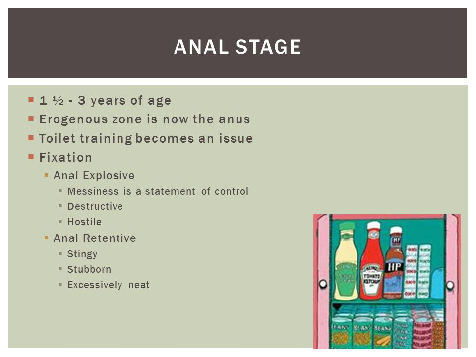 Anal stage 1 ½ - 3 years of age Erogenous zone is now the anus