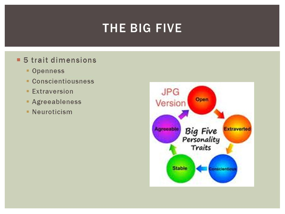 The big five 5 trait dimensions Openness Conscientiousness