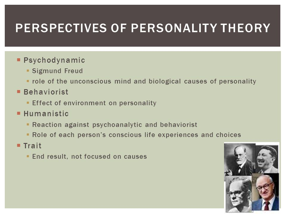 Perspectives of personality theory