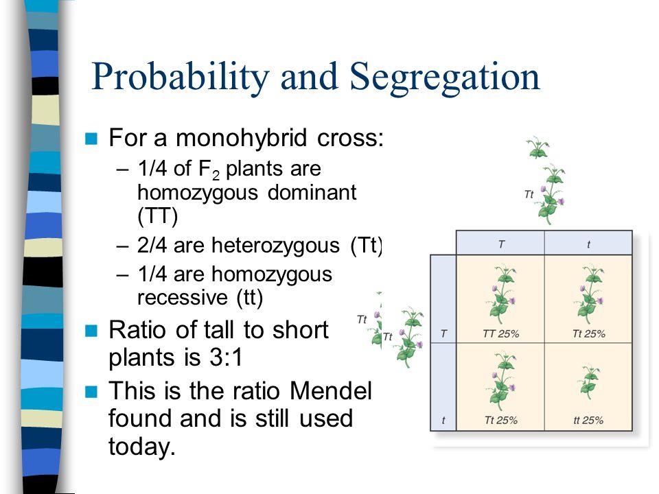 Probability and Segregation