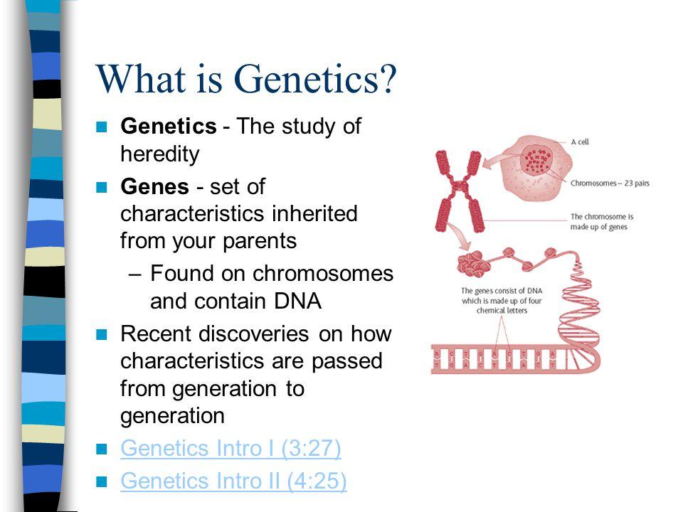 What is Genetics Genetics - The study of heredity