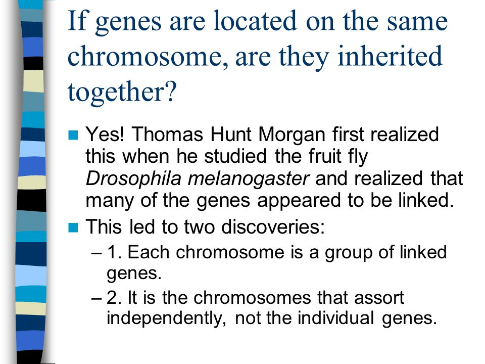 If genes are located on the same chromosome, are they inherited together