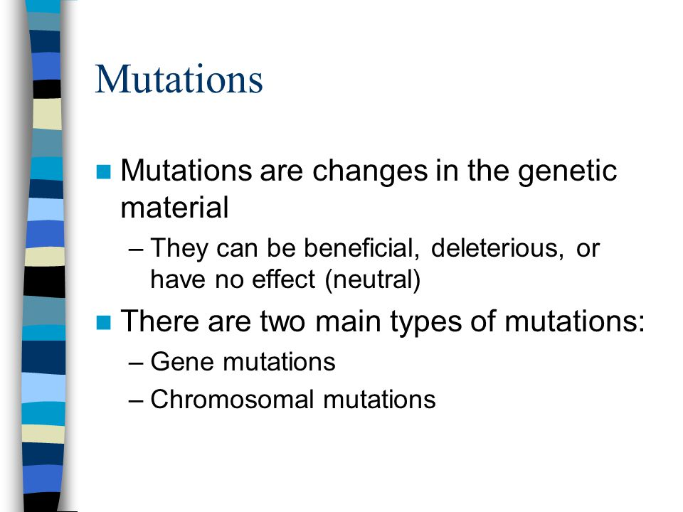 Mutations Mutations are changes in the genetic material