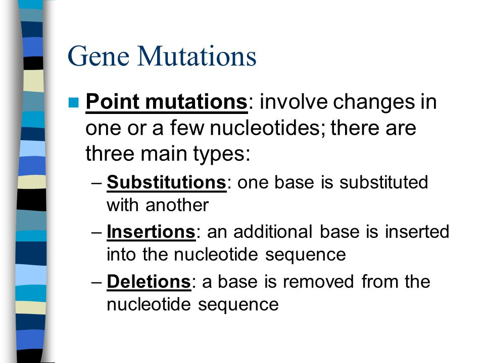 Gene Mutations Point mutations: involve changes in one or a few nucleotides; there are three main types: