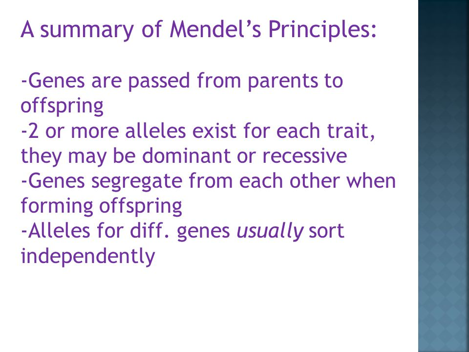 A summary of Mendel's Principles: