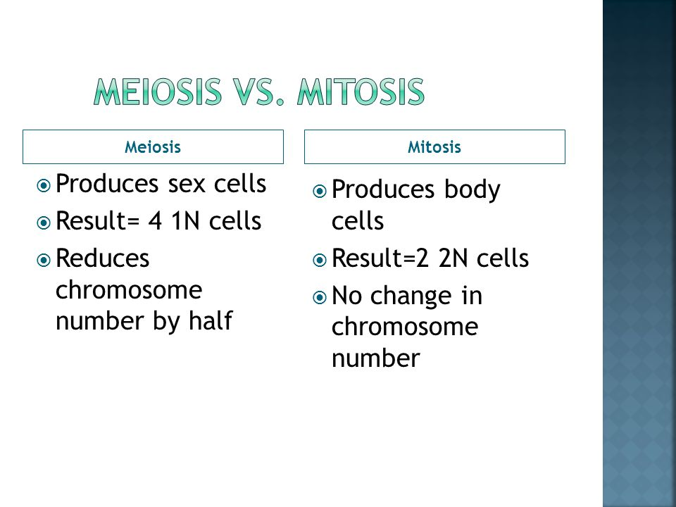 Meiosis vs. Mitosis Produces sex cells Produces body cells