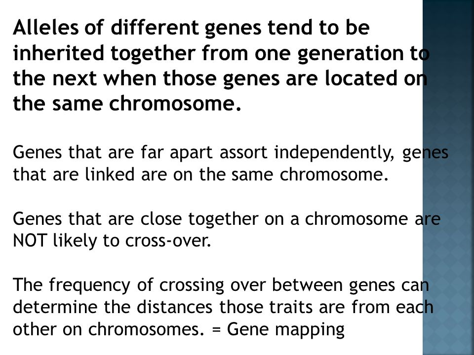Alleles of different genes tend to be inherited together from one generation to the next when those genes are located on the same chromosome.