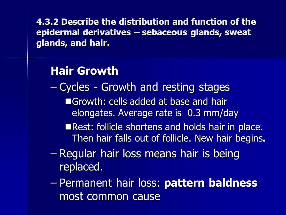 Cycles - Growth and resting stages