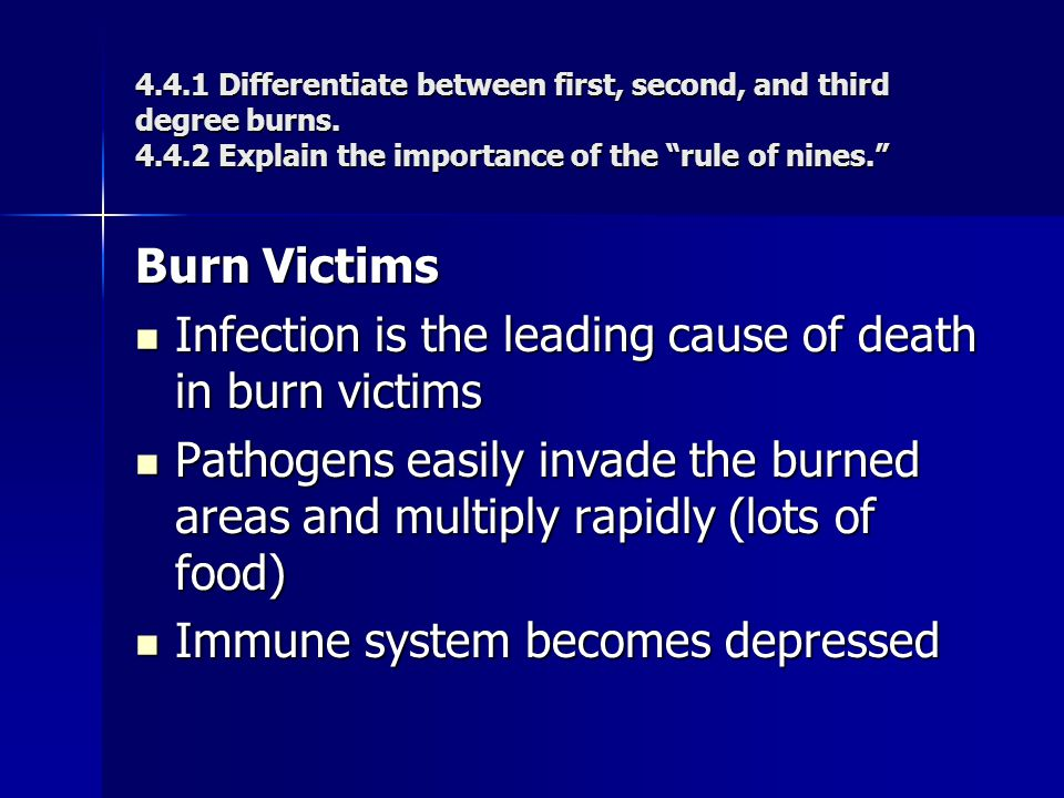 Infection is the leading cause of death in burn victims