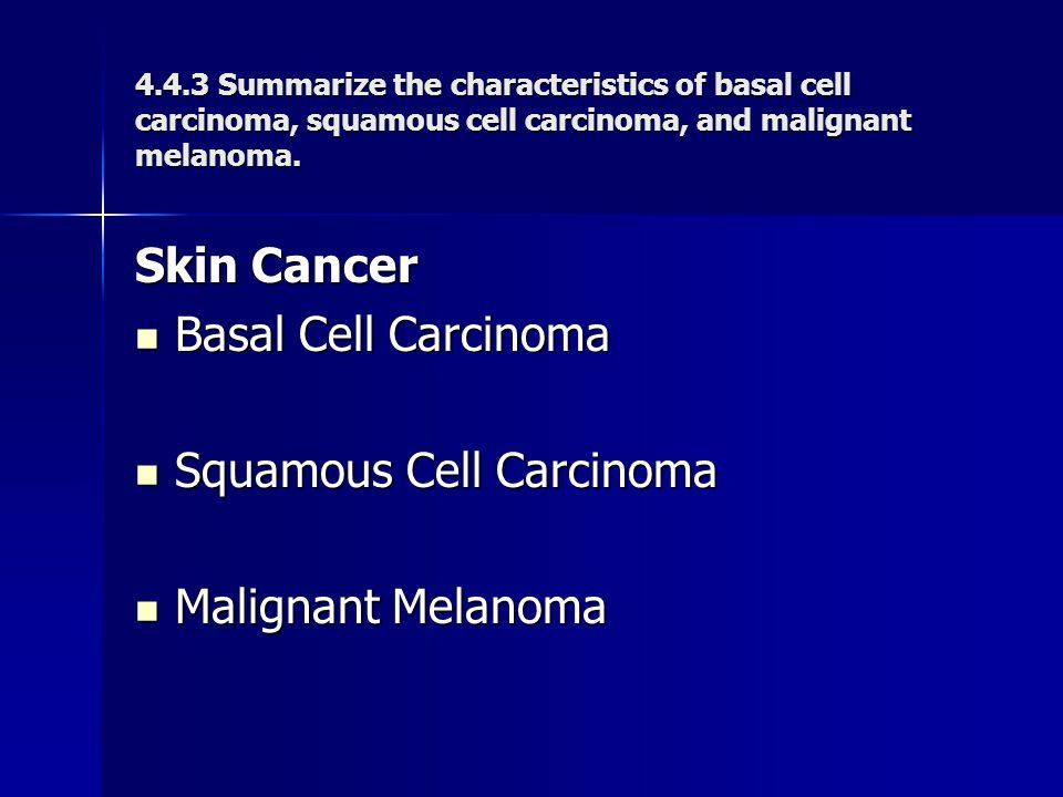 Squamous Cell Carcinoma Malignant Melanoma